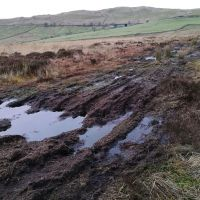 Casterton Fell Remediation